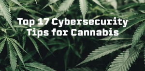 Top 17 Cybersecurity Tips for Cannabis